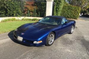 2004 Chevrolet Corvette Shale/Light Greg Photo