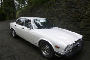1979 Jaguar XJ12 Photo