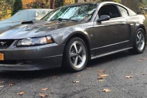 2003 Ford Mustang Photo