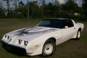 1981 Pontiac Trans Am pace car nascar edition