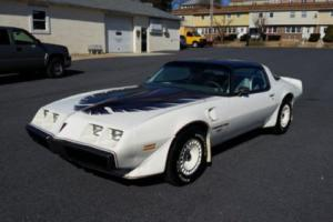 1980 Pontiac Trans Am Daytona 500 Pace Car