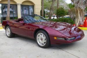 1993 Chevrolet Corvette 40th Anniversary Photo