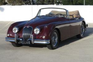 1958 Jaguar XK Photo