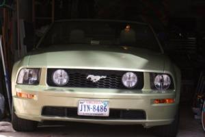 2006 Ford Mustang Photo