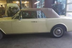 1982 Rolls-Royce Corniche Photo