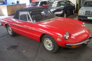 1973 Alfa Romeo Spider Spider