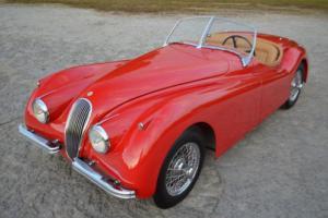 1952 Jaguar XK (Red) Photo