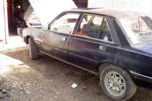 1982 Peugeot 505