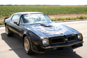 1976 Pontiac Trans Am firebird Photo
