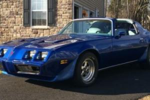 1979 Pontiac Firebird Photo