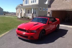 2013 Ford Mustang Photo