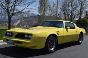 1977 Pontiac Trans Am Firebird