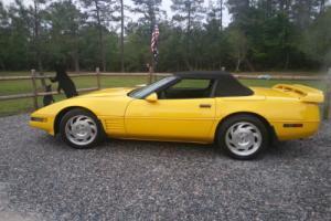 1994 Chevrolet Corvette LT1 Photo