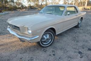 Mustang 1965 Auto 302