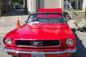 1966 Ford Mustang Black Pony Interior