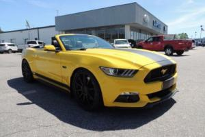 2015 Ford Mustang 2dr Convertible GT Premium