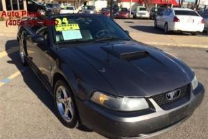 2004 Ford Mustang 40th Year