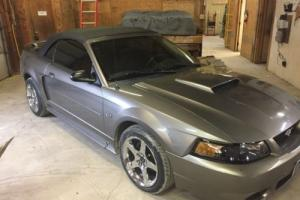 2002 Ford Mustang GT Photo