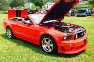 2005 Ford Mustang ROUSH Photo