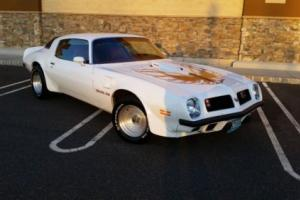 1975 Pontiac Firebird Trans Am Photo