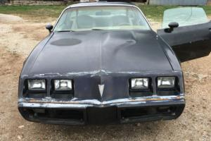 1980 Pontiac Trans Am Turbo SE