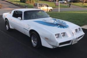 1979 Pontiac Trans Am Photo
