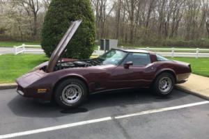 1980 Chevrolet Corvette Glass T Tops