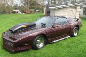 1982 Pontiac Firebird Photo
