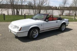 1984 Ford Mustang 20th Anniversary GT-350 Convertible