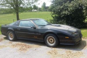 1989 Pontiac Firebird Bandit II Edition 5.0