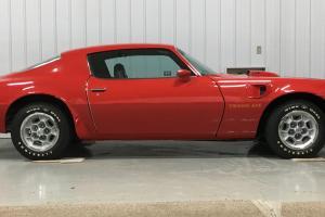 1973 Pontiac Firebird Trans Am   eBay Photo