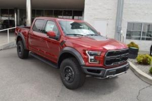 2017 Ford F-150 Raptor Photo