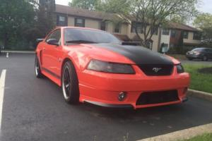 2004 Ford Mustang Photo