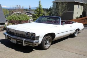 1974 Buick LeSabre Luxus