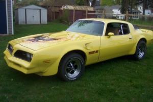 1978 Pontiac Firebird Photo
