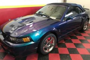 2004 Ford Mustang SVT Photo