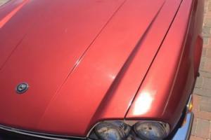 1984 Jaguar XJS Photo