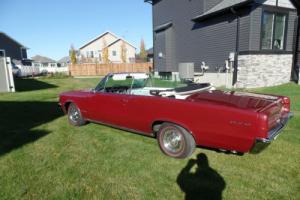 1964 Pontiac GTO Photo
