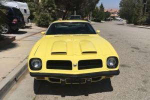 1974 Pontiac Firebird Photo