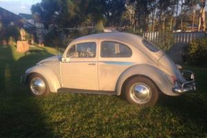 63 VW Beetle Photo