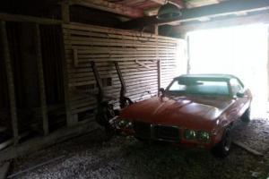 1969 Pontiac Firebird CONV Photo