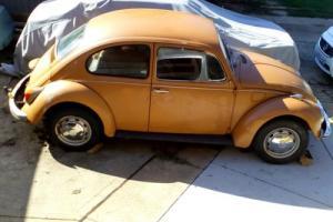 VW Beetle 1500, 1970