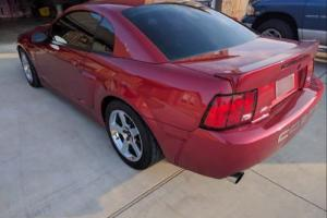 2003 Ford Mustang Cobra Coupe