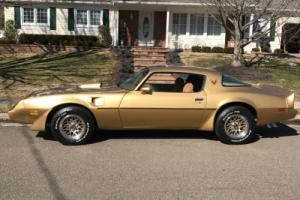 1981 Pontiac Trans Am Photo
