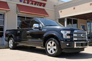 2015 Ford F-150 Platinum Photo