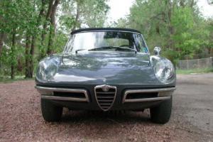 1967 Alfa Romeo Duetto 1600 --