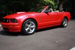 2008 Ford Mustang Photo