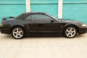 2001 Ford Mustang 2dr Convertible SVT Cobra