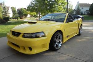 2001 Ford Mustang Photo