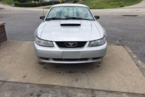 2002 Ford Mustang Photo